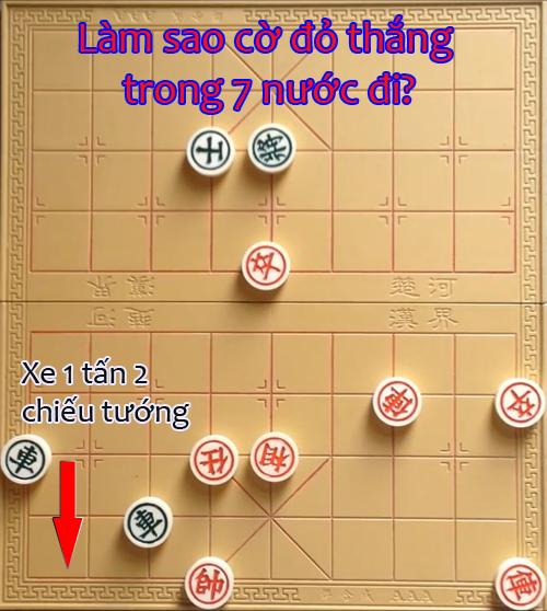 lam-sao-de-an-duoc-tuong-den-trong-7-buoc-di