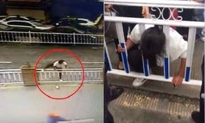 Thiếu nữ Trung Quốc kẹt đầu vào song sắt khi sang đường