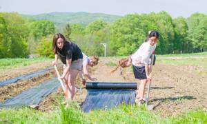 Học sinh Mỹ chăn ngựa, cuốc đất trong trường nội trú đắt đỏ