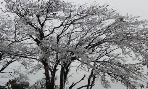 Đỉnh núi ở Cao Bằng trắng xóa băng