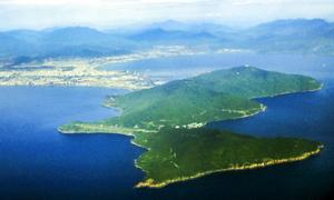 Đà Nẵng yêu cầu dừng giao dịch bất động sản trên bán đảo Sơn Trà