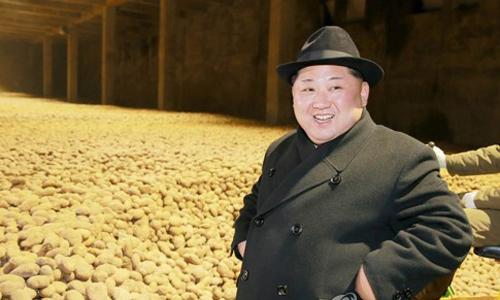 Nhà lãnh đạo Triều Tiên Kim Jong-un thăm nhà máy khoai tây. Ảnh: Yonhap.