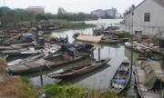 Thị trấn Trung Quốc chọn đồ chơi tình dục để đô thị hóa