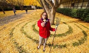 Nghệ thuật từ thảm lá vàng ở đại học Mỹ