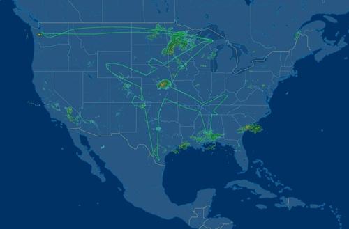 Hình vẽ do phi cơ Boeing 787 Dreamliner tạo ra. Ảnh: Flight Aware.