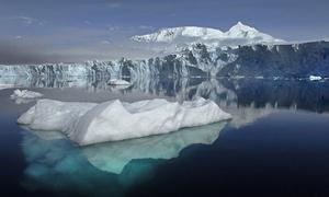 1.000 tảng băng trôi xuất hiện trên biển năm 2017