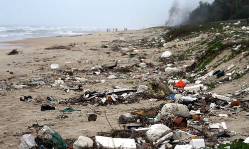 Bờ biển Quảng Nam rác tấp dày