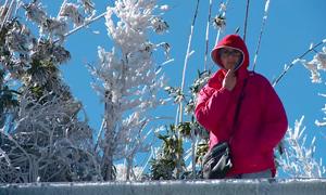 Băng tuyết phủ trắng đỉnh Fansipan, du khách ngỡ như ở Thụy Sĩ