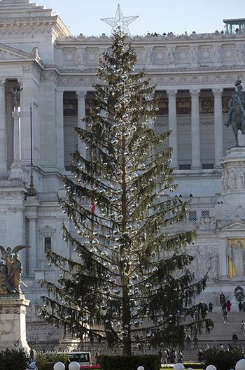 Cây thông Giáng sinh gây tranh cãi ở quảng trườngPiazza Venezia, Rome, Italy. Ảnh:AP.