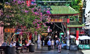 Phố người Hoa ở Sydney