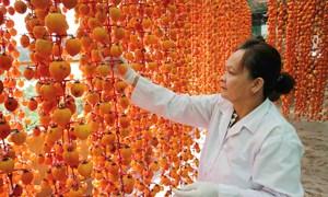 Nghề sản xuất hồng treo - đặc sản Đà Lạt
