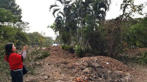 Ngay trong ngày 21/12, Công ty cổ phần Công viên cây xanh Hải Phòng được thành phố giao di chuyển toàn bộ cây xanh bên trong về vườn ươm để lấy mặt bằng thi công, đảm bảo đưa vào sử dụng trước Tết Nguyên đán 2018. Ảnh: Giang Chinh