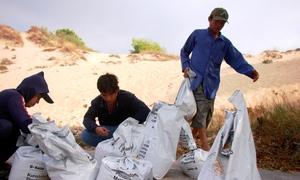 Người dân Bà Rịa - Vũng Tàu đổ xô đi xúc cát chống bão Tembin