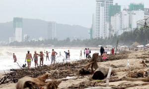 Du khách tắm trên bãi biển Nha Trang ngập rác