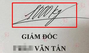 Những chữ ký mang phong cách 'đuổi hình bắt chữ'