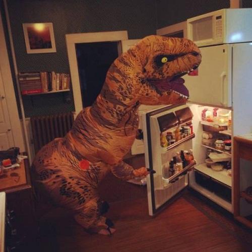 Cuộc sống thường nhật của khủng long.