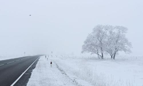 Nhiều nơi trên thế giới đang hứng chịu những đợt lạnh khác thường. Ảnh: Phys.
