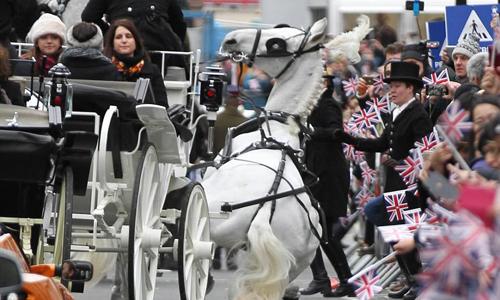 Khoảnh khắc con ngựa ngã quỵ trong cuộc diễu hành. Ảnh: AFP.