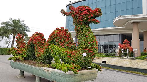 Tại triển lãm sinh vật cảnh khu vực phía Bắc đang diễn ra tại Ninh Bình còn có nhiều linh vật độc đáo hình rồng, trâu, kỳ lân... Ảnh: Việt Linh.