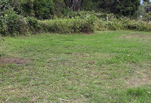 Hiện trường cô gái chăn dê ở núi Mồ Côi bị hãm hại. Ảnh: Phú An