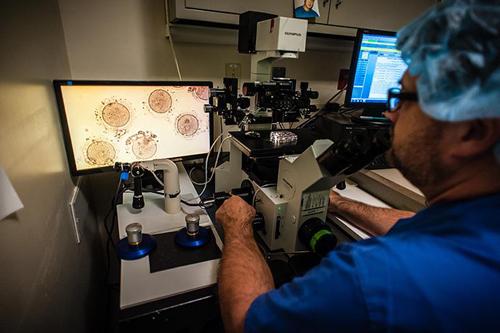 Jim Graham, giám đốc Lab Services, chiếu trên màn hình HD mẫu trứng chín. Ảnh: Washington Post.