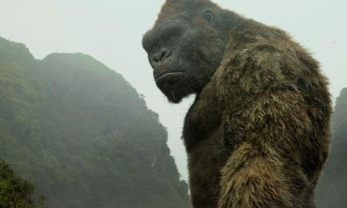 Phim Kong góp phần quảng bá hình ảnh Việt Nam ra thế giới.