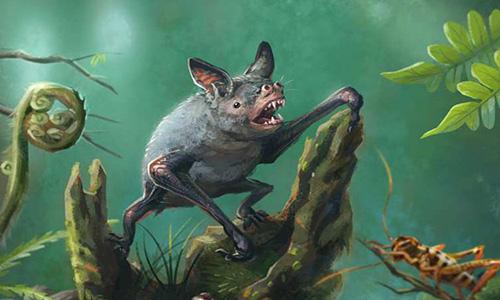 Loài dơi khổng lồ mới được phát hiện từ hóa thạch hàng triệu năm ở New Zealand. Ảnh: BBC.
