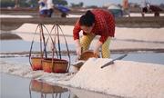 300 hộ gia đình giữ nghề làm nước mắm Cà Ná