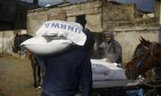 Mỹ giảm đóng góp, cơ quan vì người tị nạn Palestine khủng hoảng