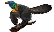 Khủng long cầu vồng có bộ lông đầy màu sắc