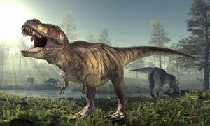 Con người có thể sinh tồn nếu sống cùng thời với khủng long không?