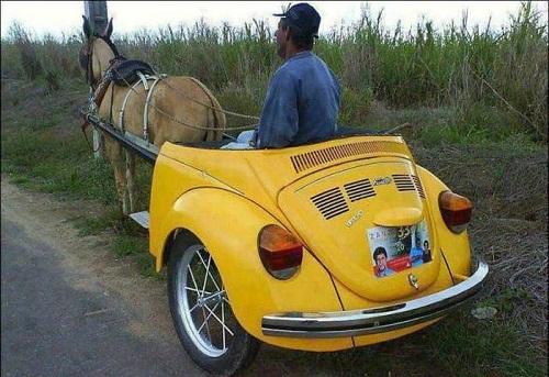 Ôtô chạy bằng sức ngựa thân thiện với môi trường.