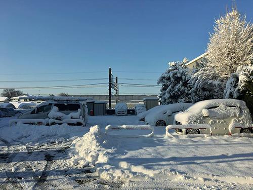 Tuyết phủ trắng một góc Tokyo.Ảnh: NVCC