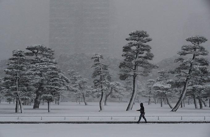 Tokyo tê liệt vì tuyết rơi dày nhất trong vòng 4 năm