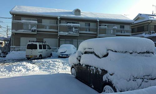 Người Việt trải nghiệm 'chân không chạm đất' ngày Tokyo thất thủ vì tuyết