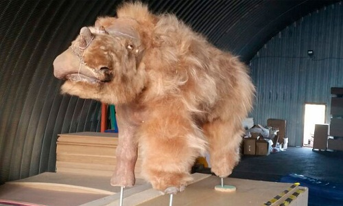 Xác Sasha được trưng bày ở một bảo tàng tại Moscow, Nga. Ảnh: Siberian Times.