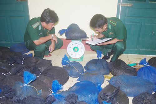 Theo cảnh sát đây là vụ vận chuyển động vật hoang dã lớn nhất từ trước đến nay ở Cà Mau. Ảnh: Lê Khoa.