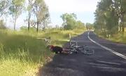 Kangaroo phi thẳng vào người đi xe đạp gây trật khớp vai