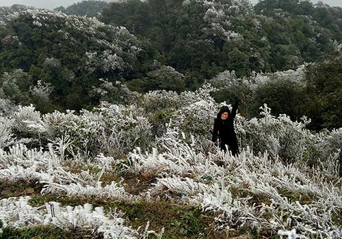 Sáng nay Mẫu Sơn (Lạng Sơn) xuống 0, hai ngày trước xuống xấp xỉ âm 2 độ, băng giá tràn ngập. Ảnh: Hoàng Huy.