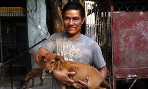 Làm giàu từ nuôi chó Phú Quốc