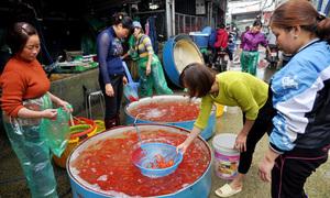 Chợ cá chép lớn nhất miền Bắc nhộn nhịp trước ngày cúng ông Táo