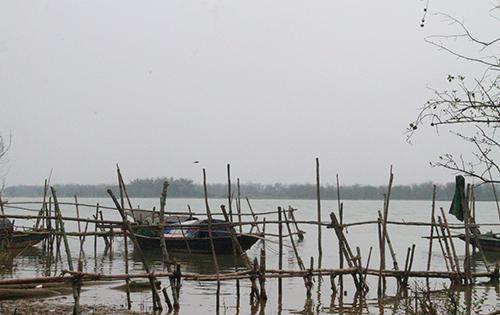 Lạch sông Lam đoạn qua xã Xuân Phổ (Nghi Xuân), nơi nhiều ngư dân từng bắt được cá sủ vàng. Ảnh: Đức Hùng