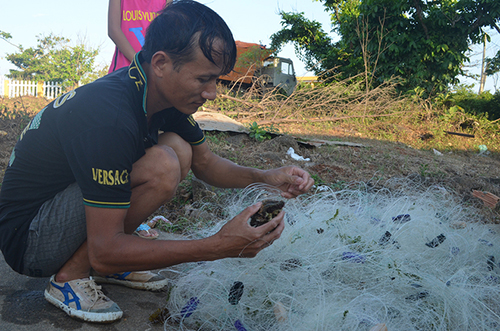 Bảy hộ gia đình trẻ ven biển huyện Vĩnh Linh được đưa ra đảo Cồn Cỏ định cư. Ảnh: Hoàng Táo