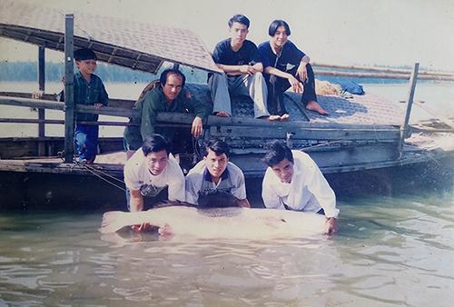 Một con cá sủ vàng nặng 67 kg mà ngư dân Hà Tĩnh bắt được năm 1998. Ảnh: Đức Hùng chụp lại.