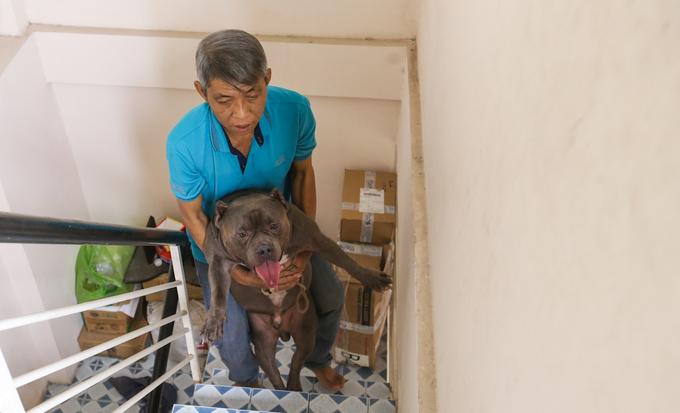 Người đàn ông nuôi chó giá chục nghìn đô ở Sài Gòn