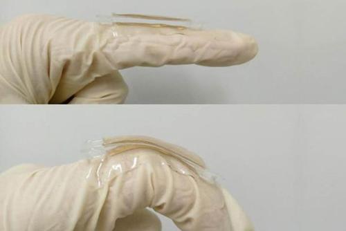 Nhãn kim loại được gắn trên ngón tay người. Ảnh: Mirror.