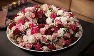 30ha hoa hồng Ecuador trồng bằng công nghệ cao