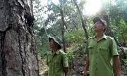 Tết của những người giữ rừng