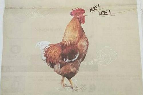 Quảng cáo có hình con gà phát ra âm thanh giống tiếng chó sủa. Ảnh: Facebook.