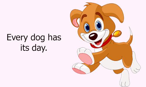 Thành ngữ tiếng Anh với dog - 4